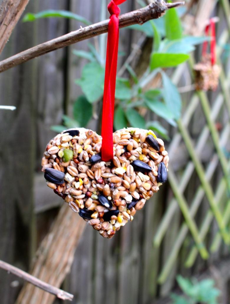 diy heart bird feeder