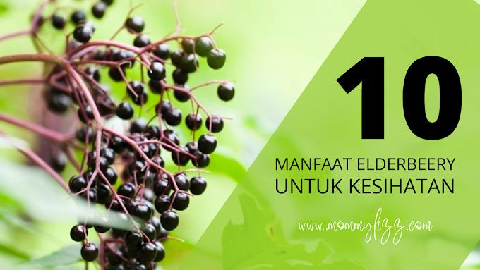 10 MANFAAT ELDERBERRY UNTUK KESIHATAN | MOMMYLIZZ