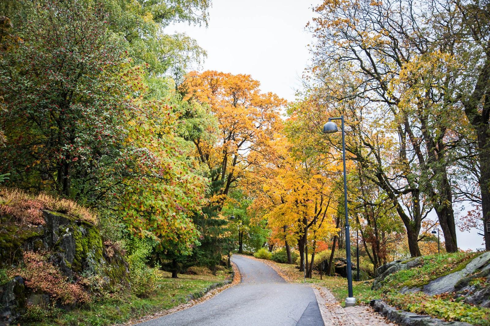 Näsipuisto Tampere