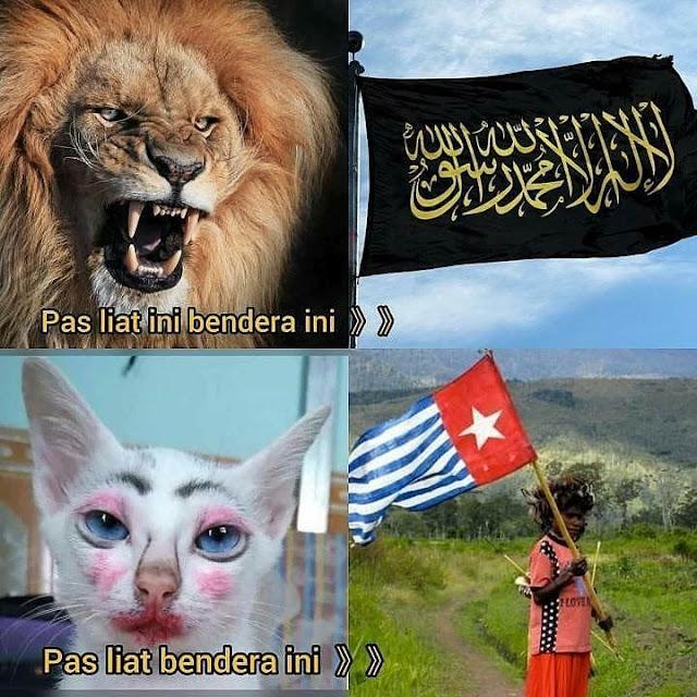 meme bendera tauhid dan bendera papua