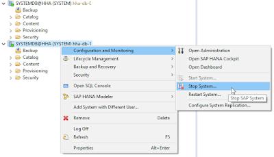 SAP HANA Guides, SAP HANA Certifications, SAP HANA Learning, SAP HANA Tutorials and Materials