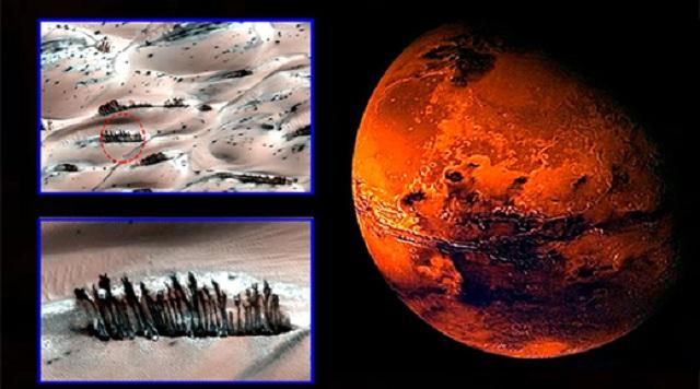 Η ανάλυση σε φωτογραφίες επιφάνειας του Άρη της  NASA αποκαλύπτουν  δέντρα!!!
