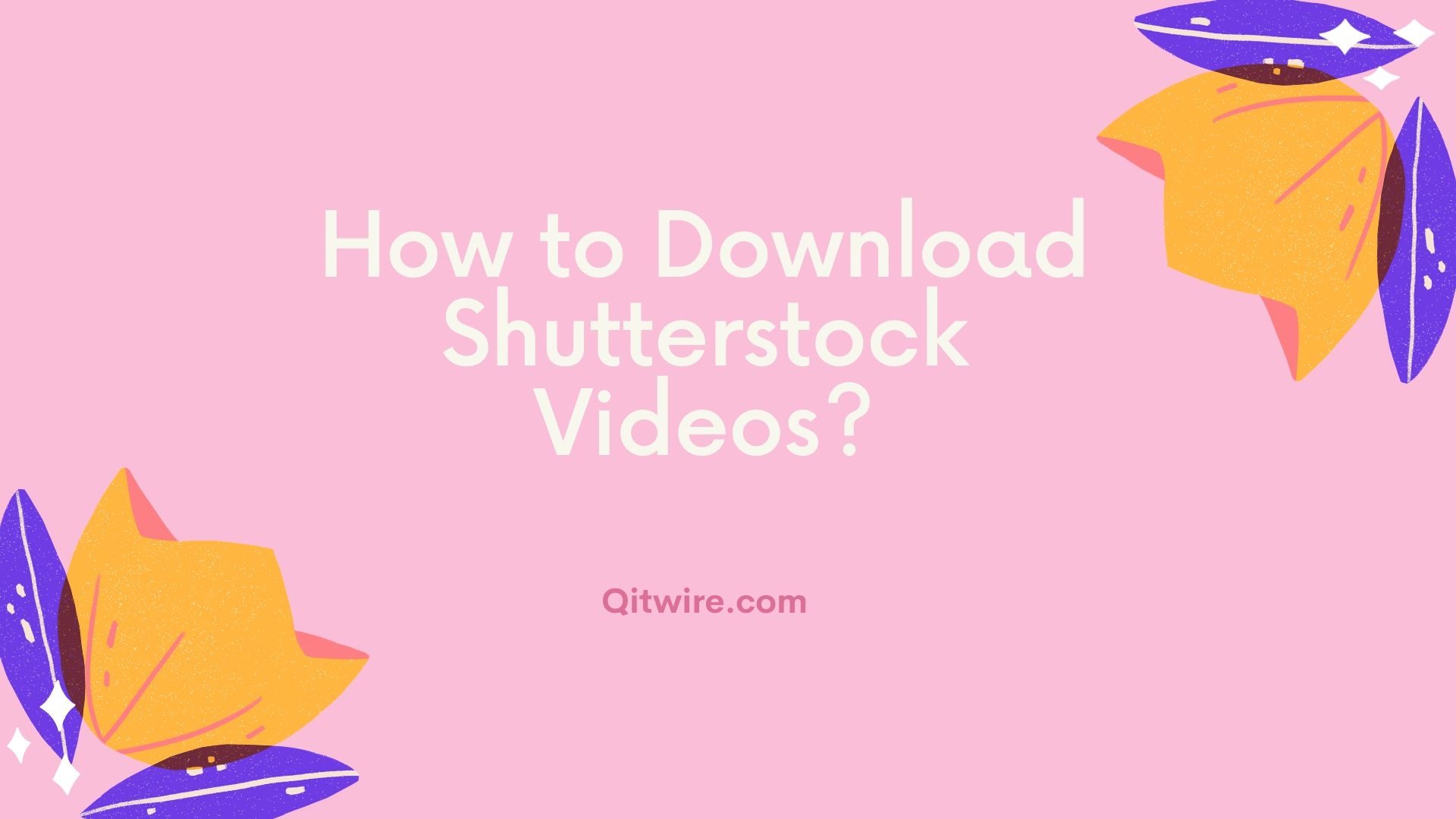 How to Download Shutterstock Videos