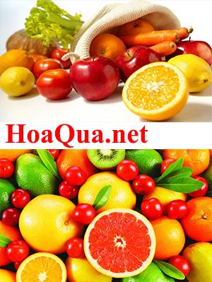 HoaQua.net