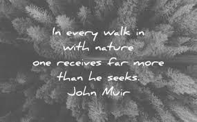 Quotes on nature and quotes about nature