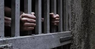 قصة السجين الثعلب