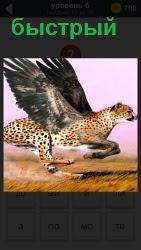 По полу бежит быстрый леопард с крыльями, которые прикреплены у него на спине