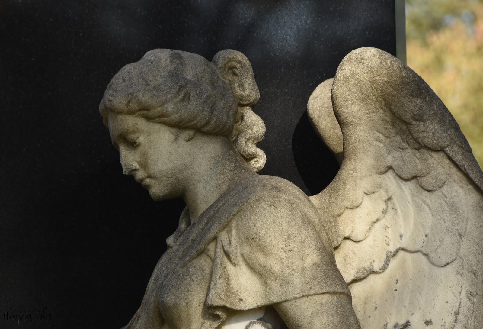 Zaduszki. Cmentarz Centralny w Wiedniu.