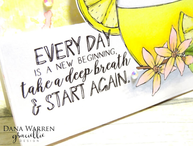 Dana Warren - Kraft Paper Stamps - Graciellie Designs Spectrum Noir