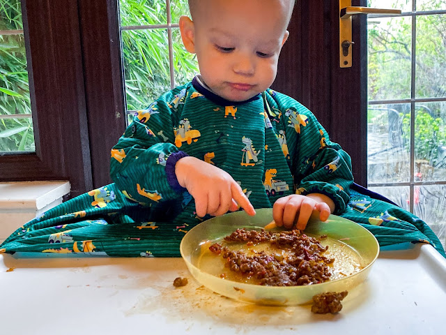baby holding plate on top of highchair tray with smears of food around