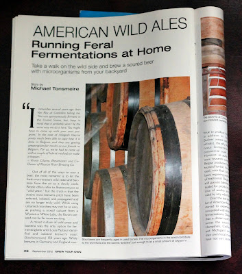 The first page of my BYO article on American Wild Ales.