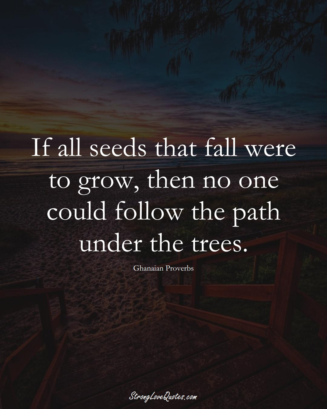 If all seeds that fall were to grow, then no one could follow the path under the trees. (Ghanaian Sayings);  #AfricanSayings