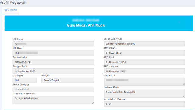 Data Profil PNS