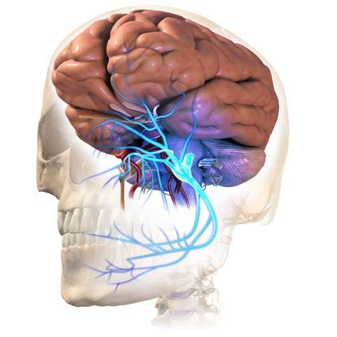 Asuhan Keperawatan Pada Pasien dengan Neuralgia Trigeminal - Intervensi
