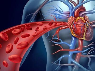 Enfermedades cardiovasculares, responsables de 8 de cada 10 mujeres que mueren en RD