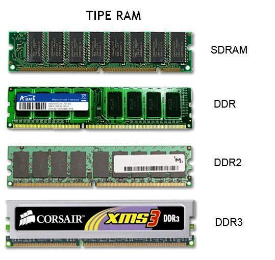 tampilan fisik dari jenis-jenis RAM