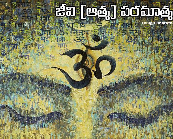 జీవం లేనప్పుడు పిండాలు పెట్టడం శ్రార్ద ఖర్మలు చేయడం దేనికి సంకేతం - Jivatma and Srardha Karma
