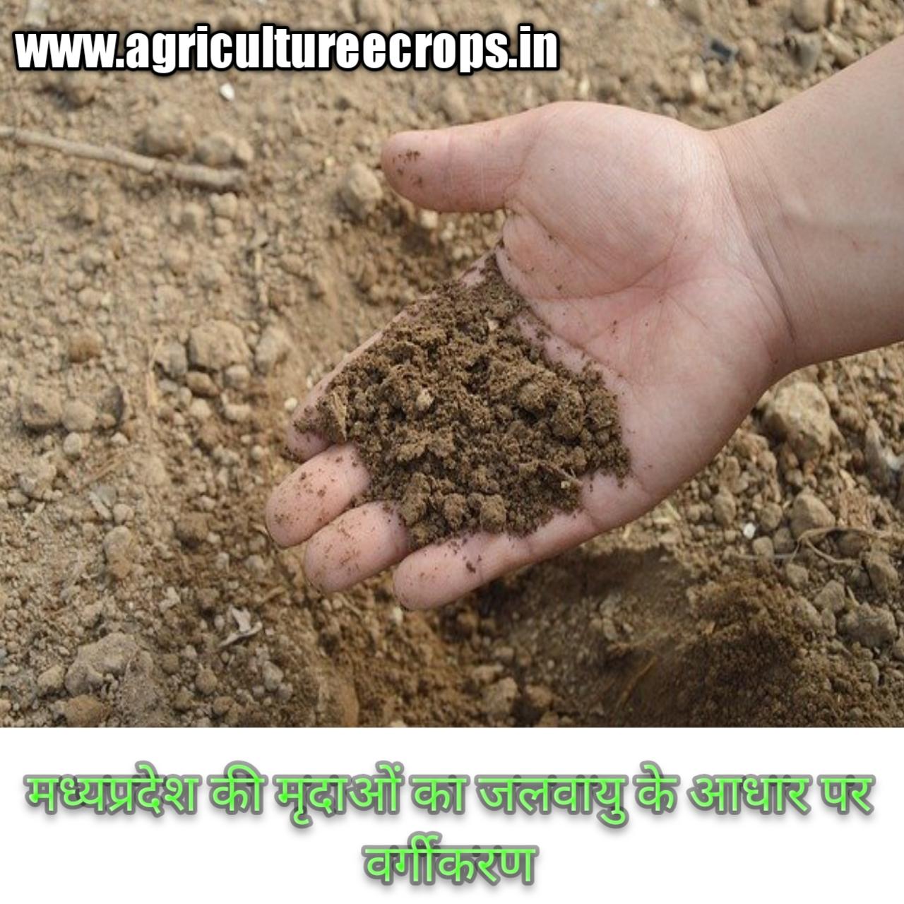 मध्यप्रदेश की मृदाओं का जलवायु के आधार पर वर्गीकरण हिन्दी में Classification of soil of Madhya Pradesh on the basis of climate in Hindi