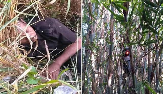 Viral Motor Driver Ojol Nyangkut Di Pohon Bambu Setelah Dapat Orderan Mistis, Ini Cerita Sebenarnya