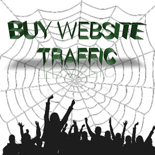 Where can I buy traffic for my website cheap price only 10$