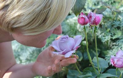 Cara Agar Hidung Bisa Mencium Bau Lagi