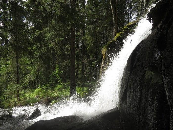 Vattenfall Örnsköldsvik