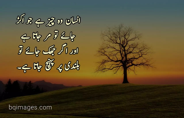 Best Quotes About Insaan