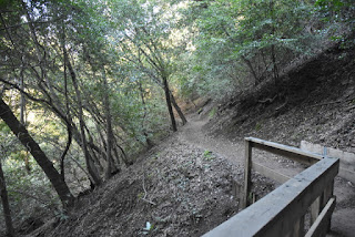 Wooden bridge along the narrow Flume Trail, St. Joseph's Hill Open Space Preserve, Los Gatos, California