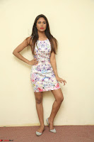 Nishi Ganda stunning cute in Flower Print short dress at Tick Tack Movie Press Meet March 2017 044.JPG