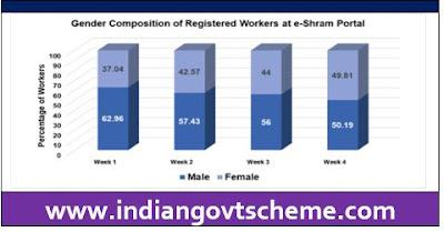 Gender Composition of Registered Workers