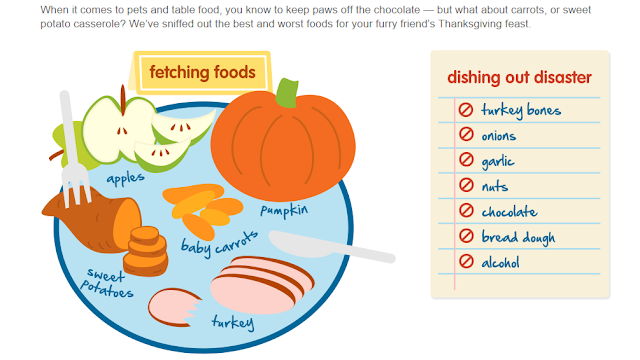 Infograph showing good and bad Thanksgiving foods for dogs