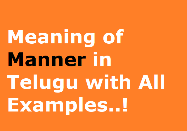 Meaning of Manner in Telugu with All Examples