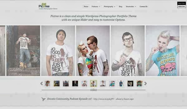 Pictree-responsive-WordPress-theme