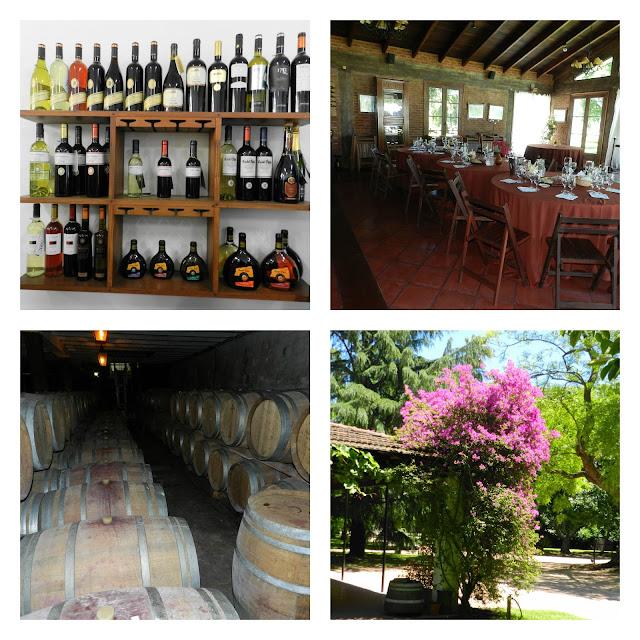 Visita a vinicola Carrau - Montevideo, Uruguai