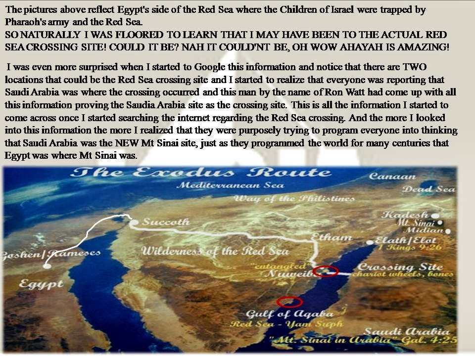THE REAL RED SEA CROSSING PG10