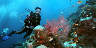 Papua Surga Wisata Bahari