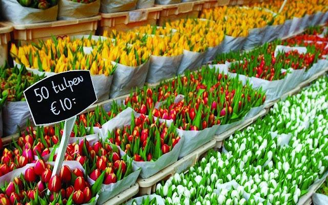Mercado de flores flutuante em Amsterdã na Holanda