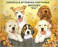 http://misiowyzakatek.blogspot.com/2019/10/zwierzeca-wymianka-kartkowa-pazdziernik.html