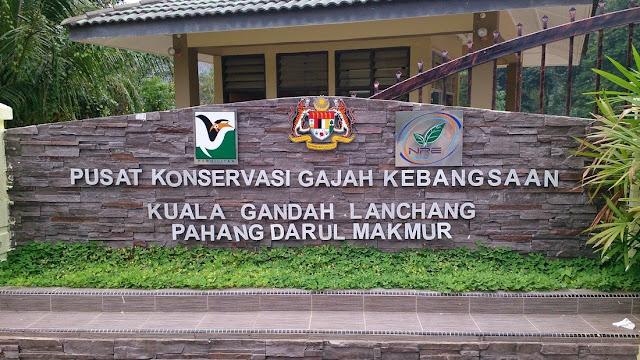 Pusat Konservasi Gajah Kebangsaan @ Kuala Gandah (NECC)