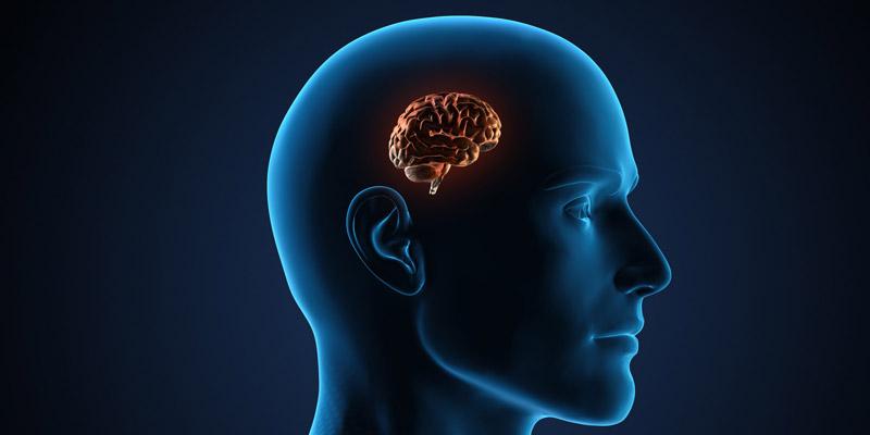 10 thói quen sẽ gây teo não mà bạn cần tránh