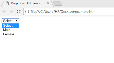 HTML-drop-down-list-example-output