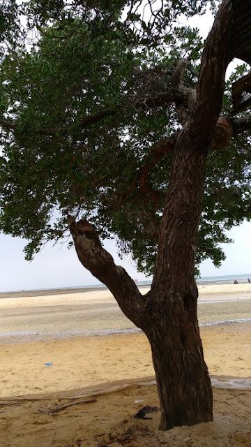 Pantai Setokok