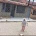 Sapeaçu: Idosa mata animal cruelmente