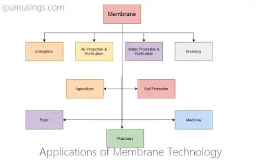 Understanding Membrane Technology (#biotechnology)(#biochemistry)(#ipumusings)