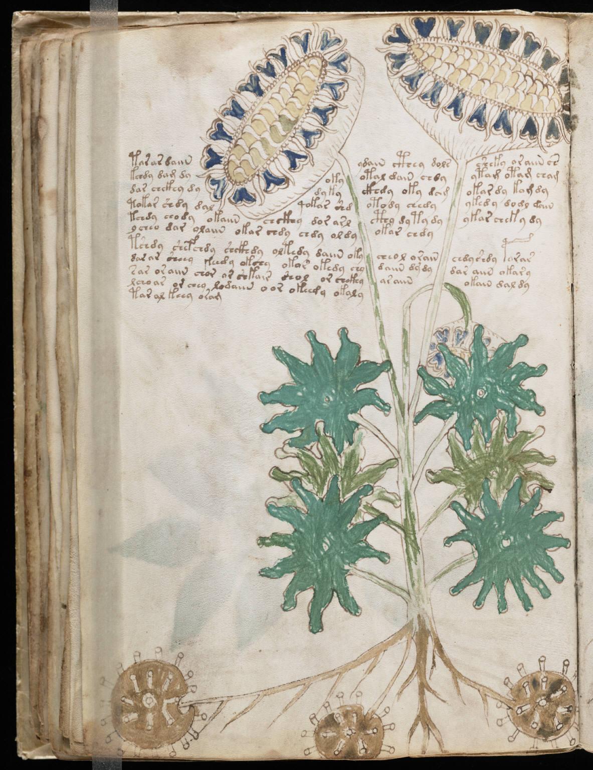 manuscrito064