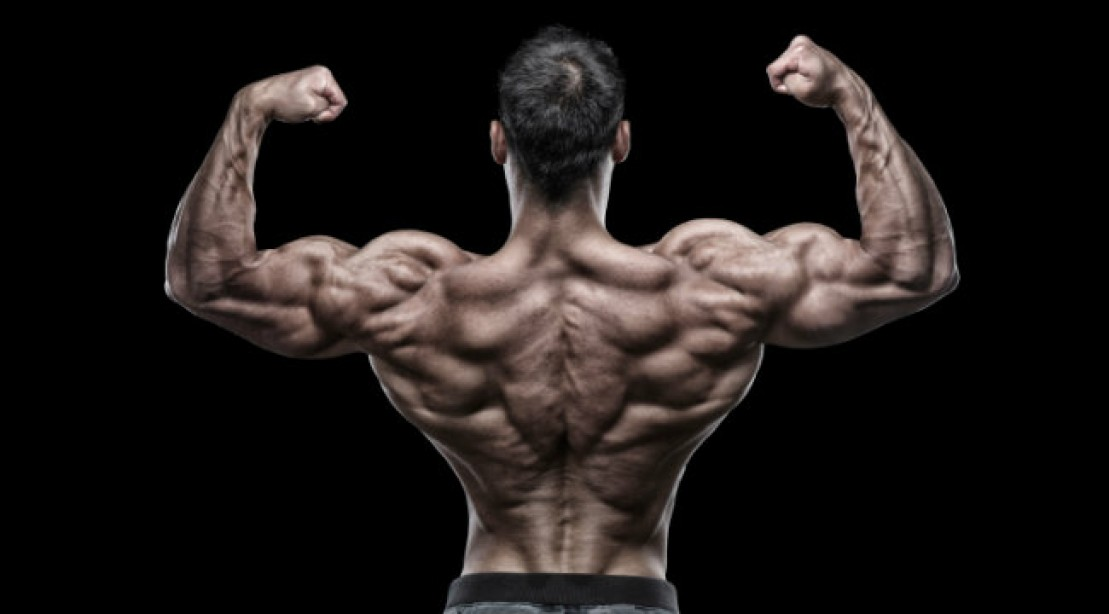 The 7 Best Muscle Building Back Exercise For Men