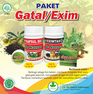 obat herbal penyakit eksim basah