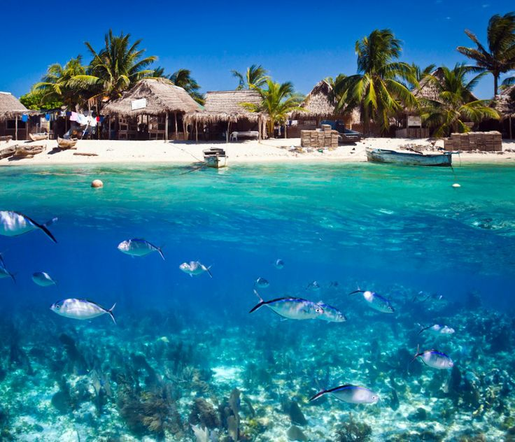 Roatan Island: Every Day Is Special: April 14