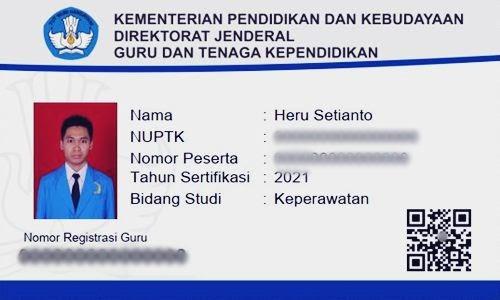 Foto Review Cara Cek Status dan Cetak NRG di Kemdikbud Via Online Terbaru - www.herusetianto.com