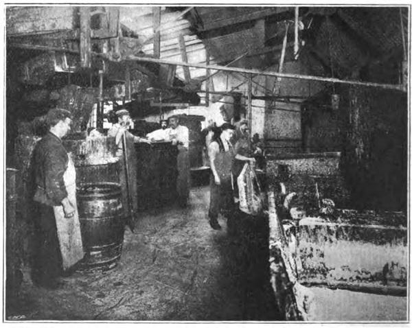 oil soap factory